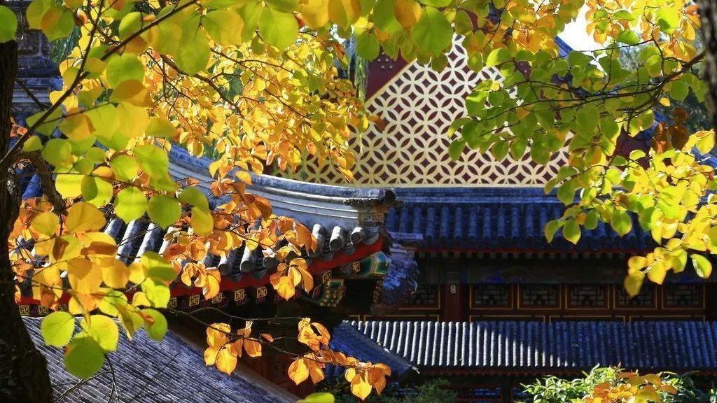 最美的北京即将呈现!千万不要错过!