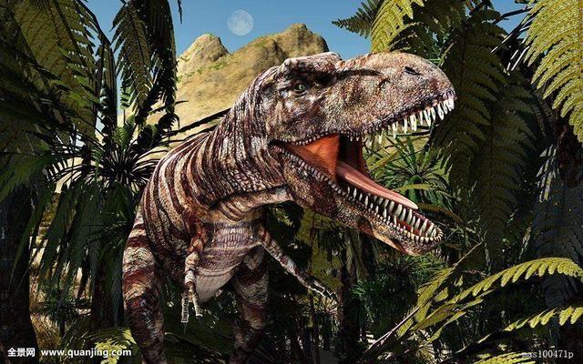 灭绝的飞行爬行动物——翼龙的化石,并利用x射线ct扫描和解剖技术观察
