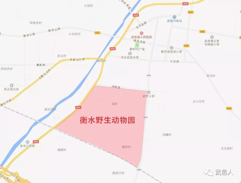 衡水野生动物园地址曝光!-北京时间