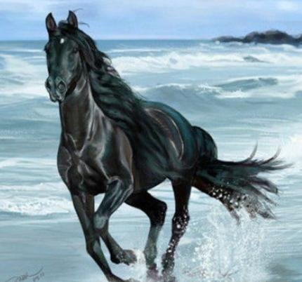 其中汗血馬是最純的馬種,阿拉伯馬和英國馬都有汗血馬的血統和基因.圖片