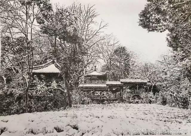"""先生的钢笔画作品《花圃莳花广场》 长大后,他的工作还是""""画""""西湖 从"""