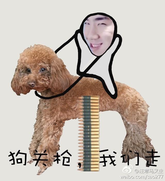 人与动物之骚婆娘与狗_壁纸 动物 狗 狗狗 640_701