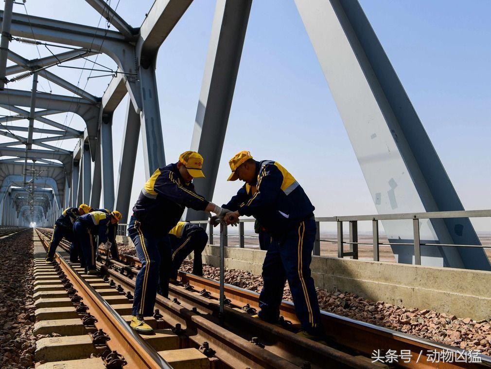 内蒙包头:探访包西线黄河大桥上的