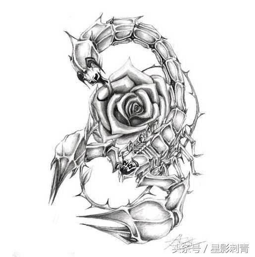 纹身素材|时光依旧飞逝 还有我红玫色的青春-北京时间图片