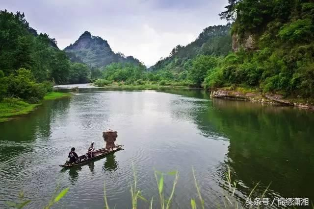 绿色大自然晨曦风景