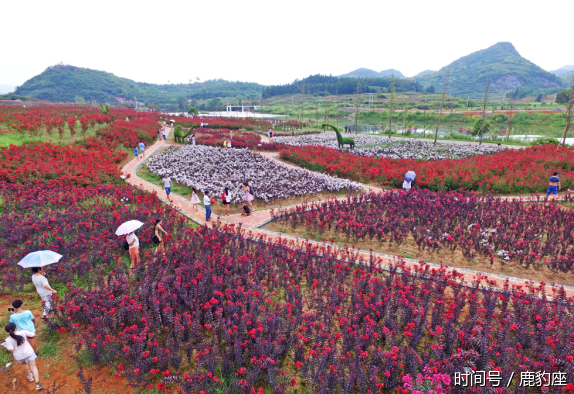 紫薇山庄,静心茶堂,婚庆广场,紫薇鹊桥,万蝶谷,荷花池等28个景观点,处