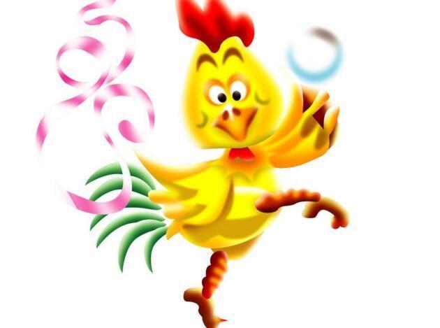 鸡对人有感情吗 好看