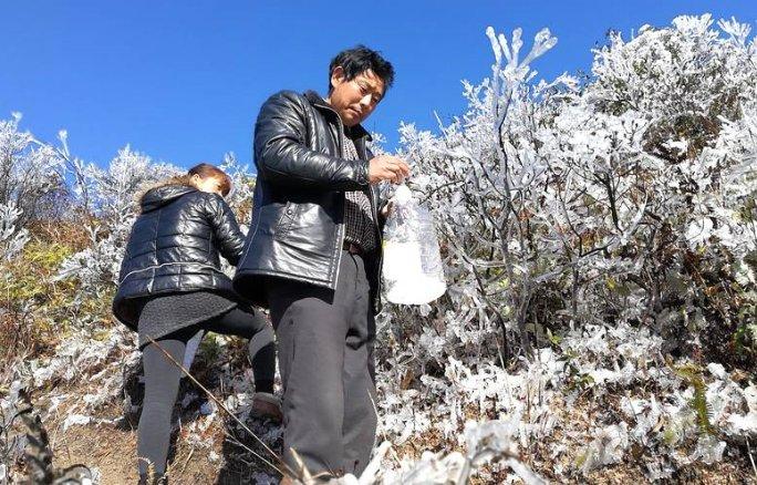 广东缺水下雪背心忙取雪饮用民工蕾丝骷髅图片