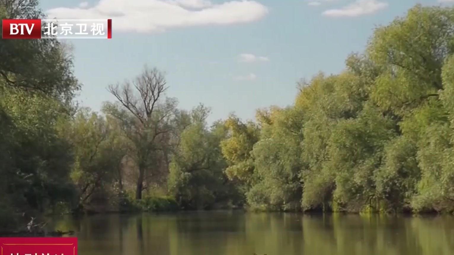 伏尔加节  畅游伏尔加河三角洲