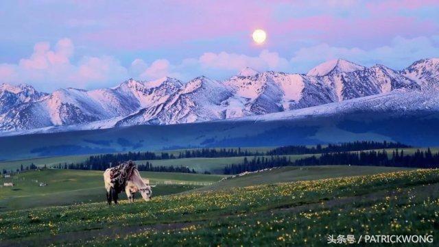 新疆油画风景图3d