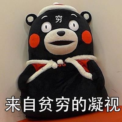 一套熊本熊状况超确切表达过年表情胖搞笑图片照片了的图片
