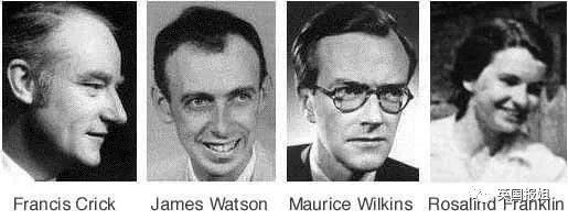 1962年,沃森,克里克,威尔金斯拿到了诺贝尔奖,而这一年,因为长期从事