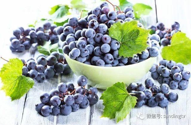 """号称""""紫水晶""""葡萄的正确清洗方法和保存注意事项"""