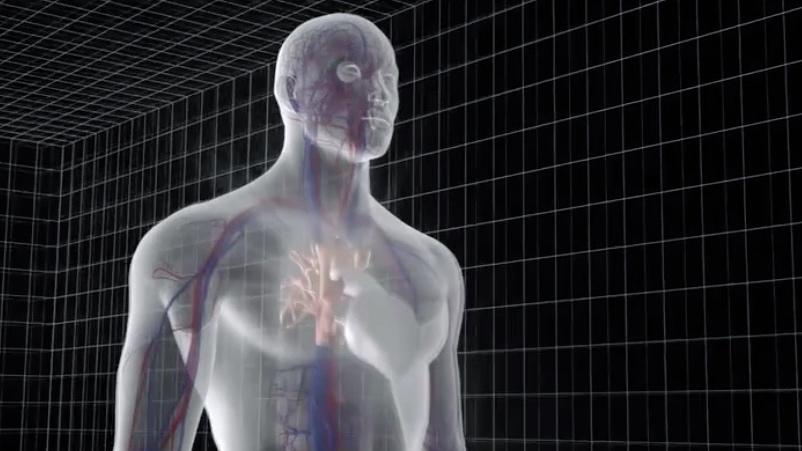 """重磅!国产""""人工心脏""""取得突破入选2019年中国医学重大进展"""