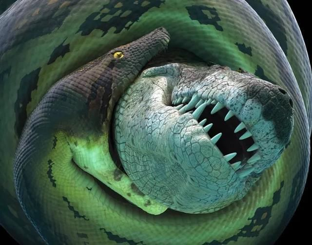 六千万年前,霸王龙灭绝了,崛起的不是哺乳动物,而是泰坦巨蟒