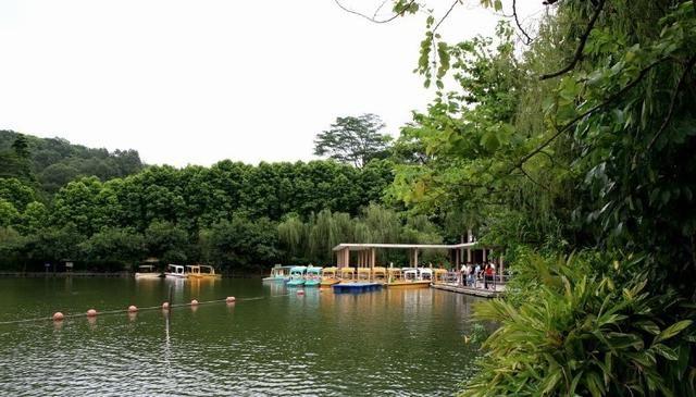 小坪森林公园(同安)