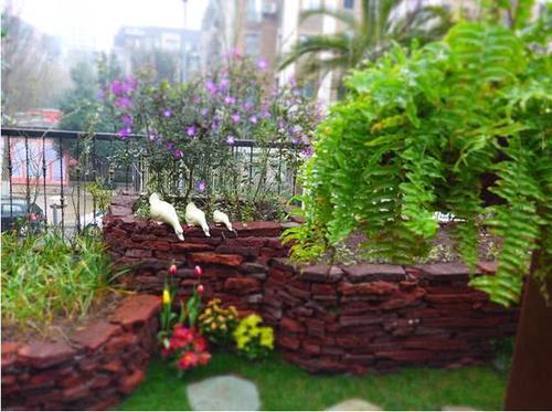 家有小庭院48平,喝茶,赏花,看风景,还有比这更休闲的吗?图片
