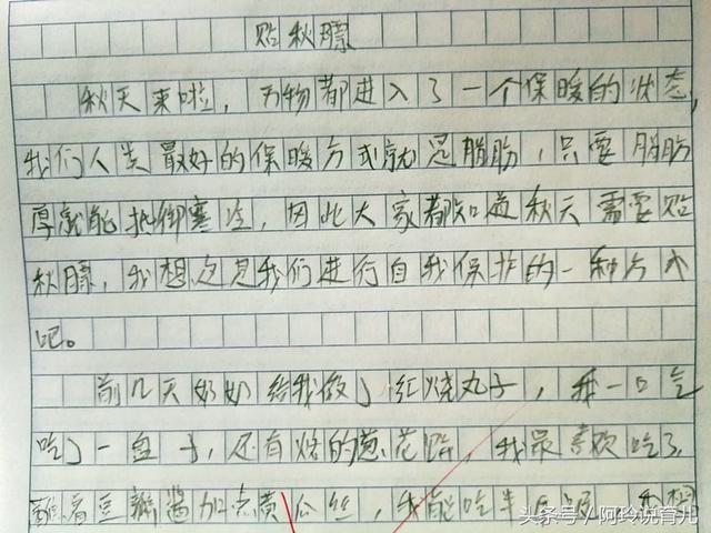 小学生家长《贴秋膘》,高中看后笑岔气,老师:这练习字作文词图片