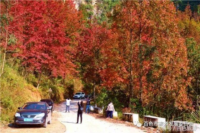 枫林小屋高清风景图片