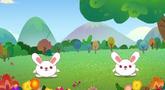 第85集 兔子舞
