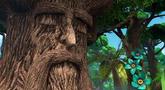 第11集 树洞的烦恼