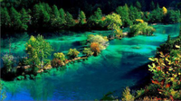 九寨沟景观半年可自然恢复