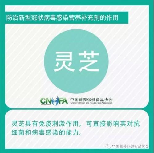 重磅消息,灵芝被推荐为防治新型冠状病毒感染的营养补充剂