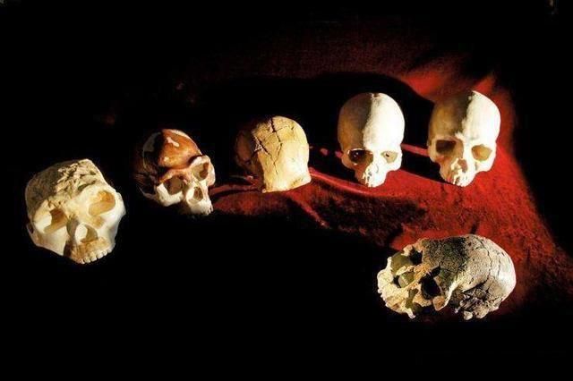 复旦大学教授:7万年前中国古人类全部灭绝,非