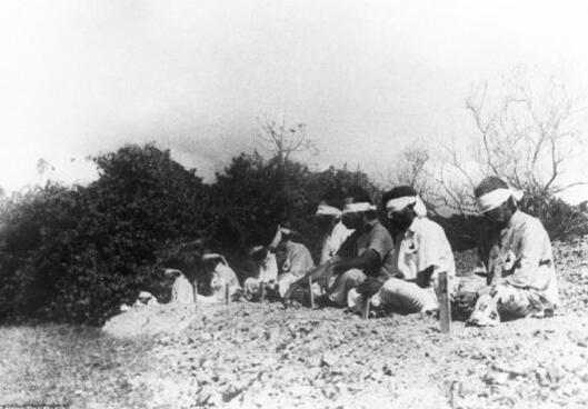 澳门游艺场:罕见照片再次揭示二战日军暴行