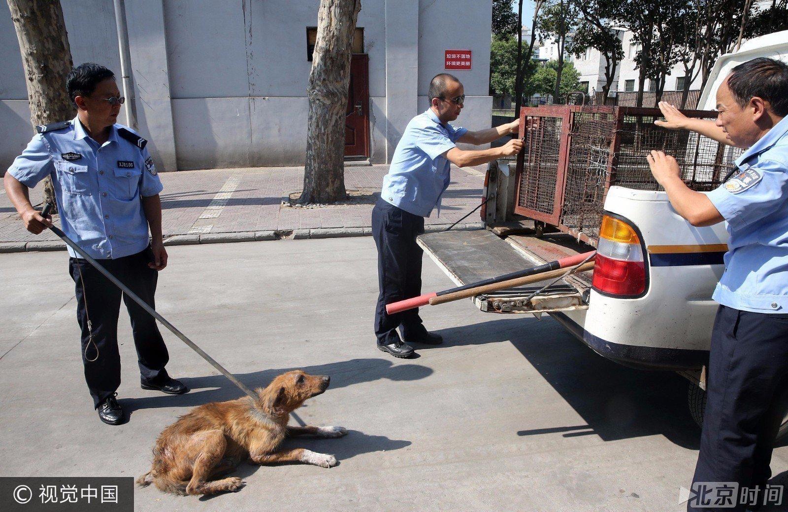 【转】北京时间       西安32岁女子狂犬病发作身亡 全城打狗 - 妙康居士 - 妙康居士~晴樵雪读的博客