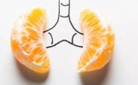 【网络】肾脏有病的十三个信号!据说,这是最齐全的总结 - 张艺之 - 张艺之的博客