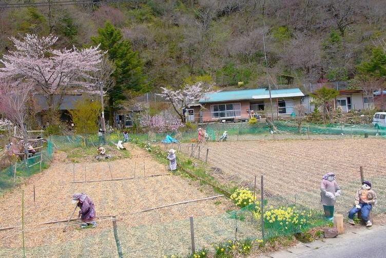 日本500人口村庄 却只有一人会说话