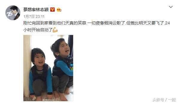 林志颖晒双胞胎儿子照片,网友:我要偷孩子!