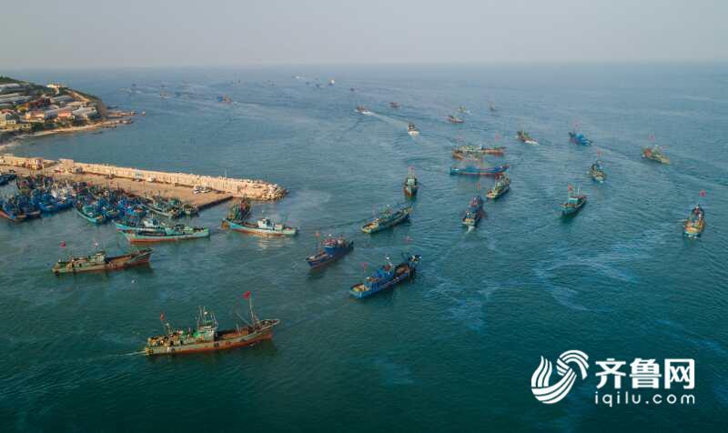 116秒|震撼!航拍黄渤海4万渔船竞渡争捕金秋第一网