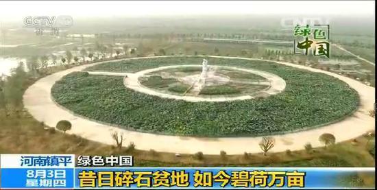 视台新闻频道对镇平县万亩荷花进行现场直播