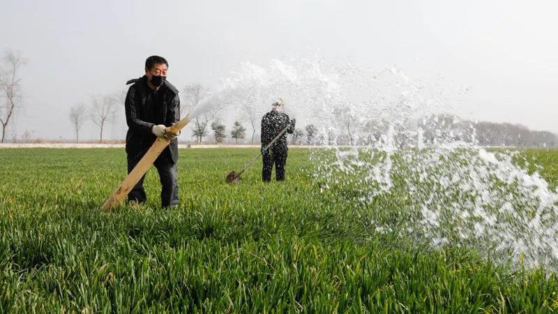 主动对接   确保春耕生产物资运得出生产一线运得到田间地头