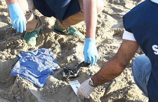 女子在海滩遭4男子轮奸 男友被迫目睹全程 - 周公乐 - xinhua8848 的博客