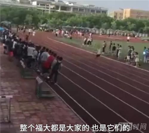 福州大学运动会第三竟是一条狗 前两名松了口气:还好比狗快! - 周公乐 - xinhua8848 的博客