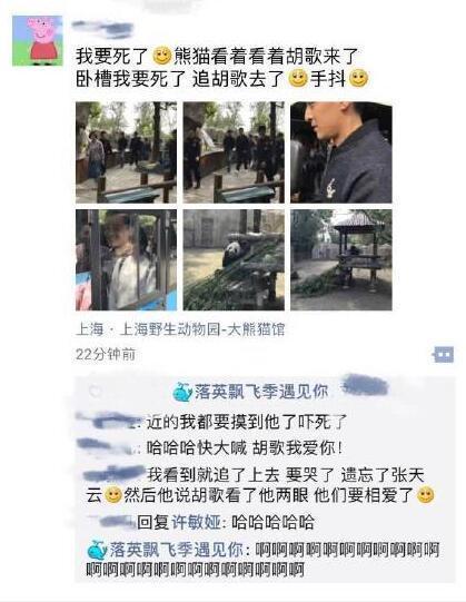 AG捕鱼王:游客连大熊猫都不看了!胡歌现身动物园引围观